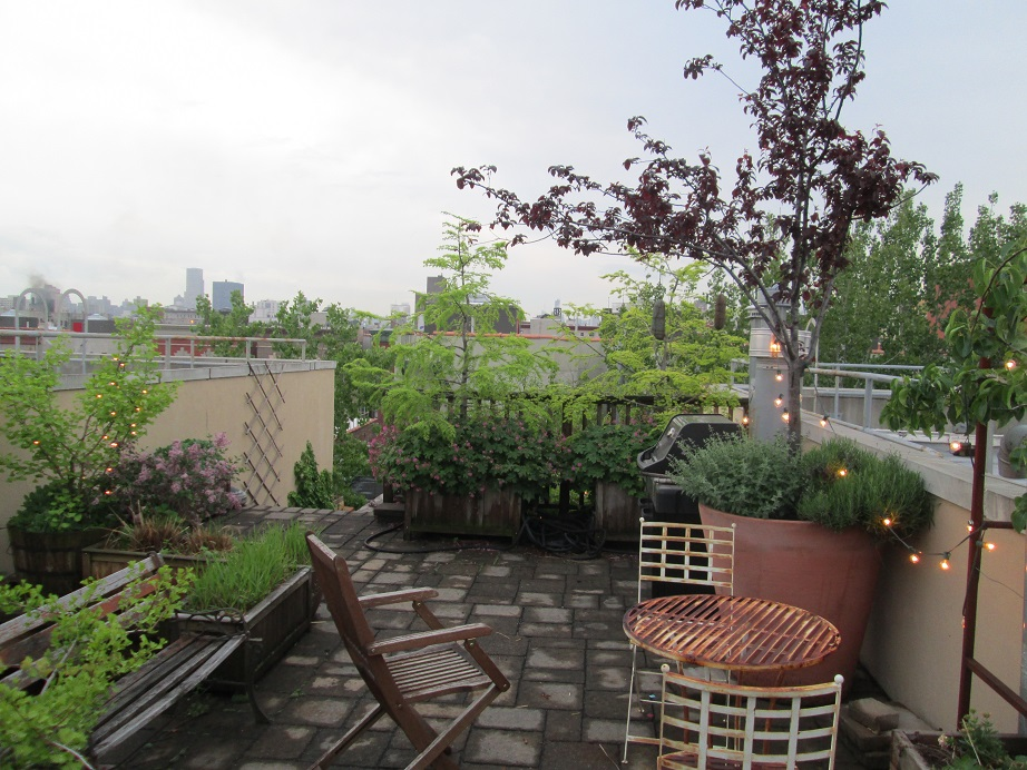 Sheri and Ed Bartlett's Roof Garden